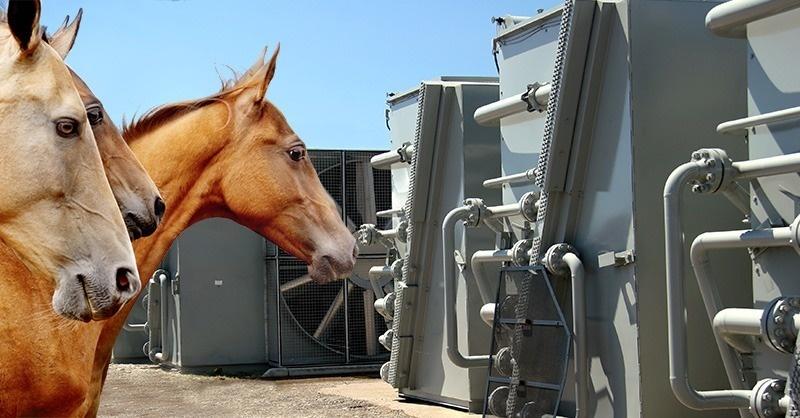 A ló hatása a hűtéstechnikára